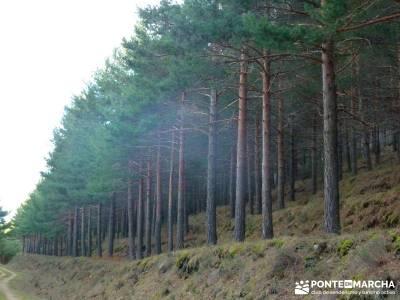 Sestil de Maillo - Mojonavalle; grupo de senderismo; trekking madrid;trekking madeira